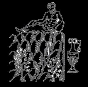 il dio isonzo brotto vini